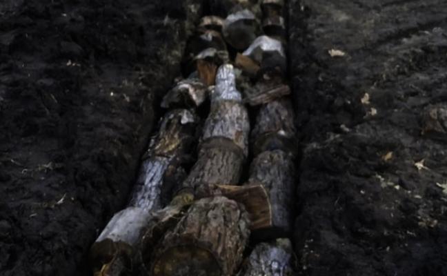 Hugelkultur- Make Use of Woody Waste